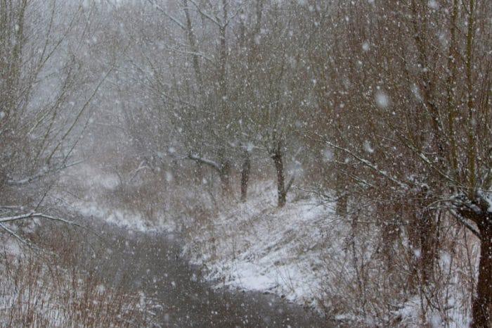 """Storie e racconti di Natale da raccontarsi sotto l'albero: """"Cominciava a nevicare"""""""