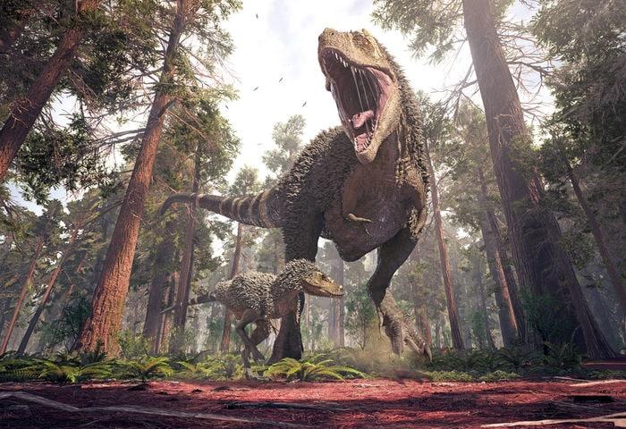 dinosauri carnivori
