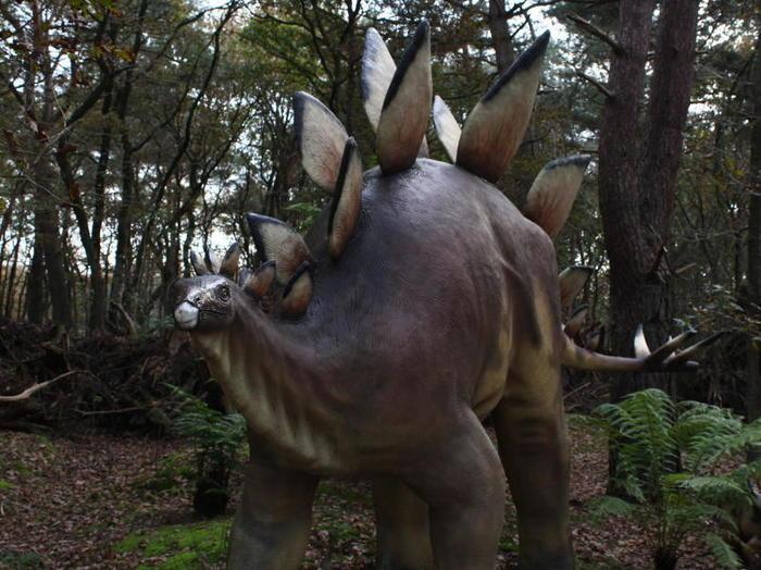 Dinosauri vegetariani (e non erbivori): quali erano e quali caratteristiche avevano