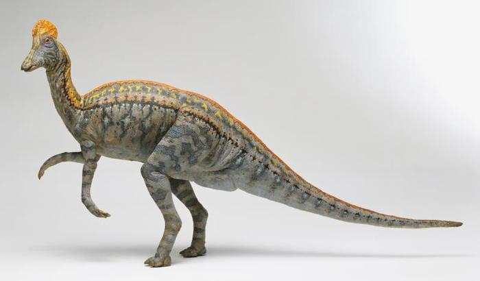 dinosauri vegetariani (non erbivori)