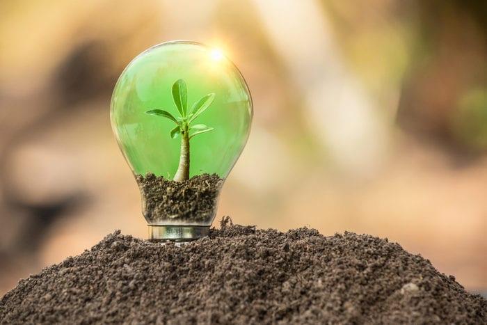 9 + 1 cose che devi sapere sulle energie rinnovabili