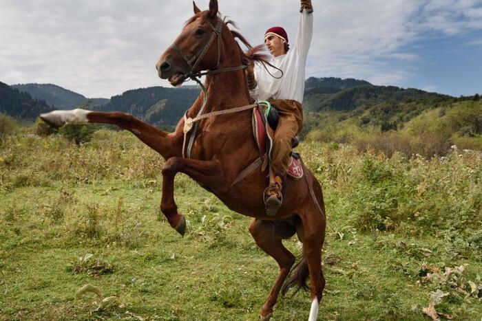Chi per primo ha addomesticato i cavalli?