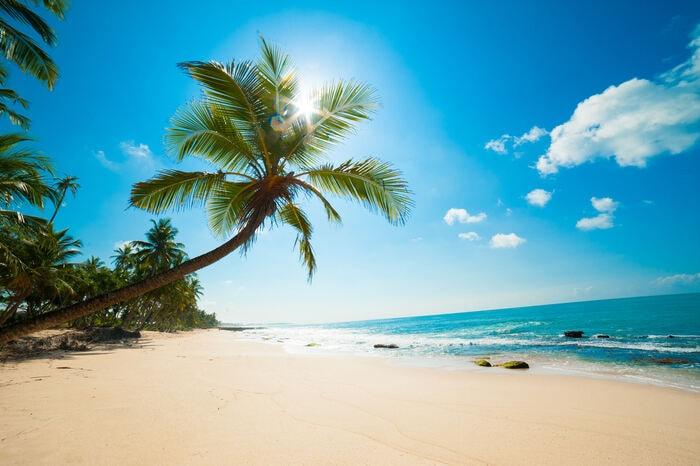 Da dove viene la sabbia delle spiagge?