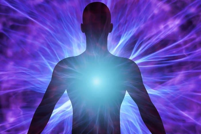 Quali sono gli organi del corpo umano che hanno bisogno di più energia?