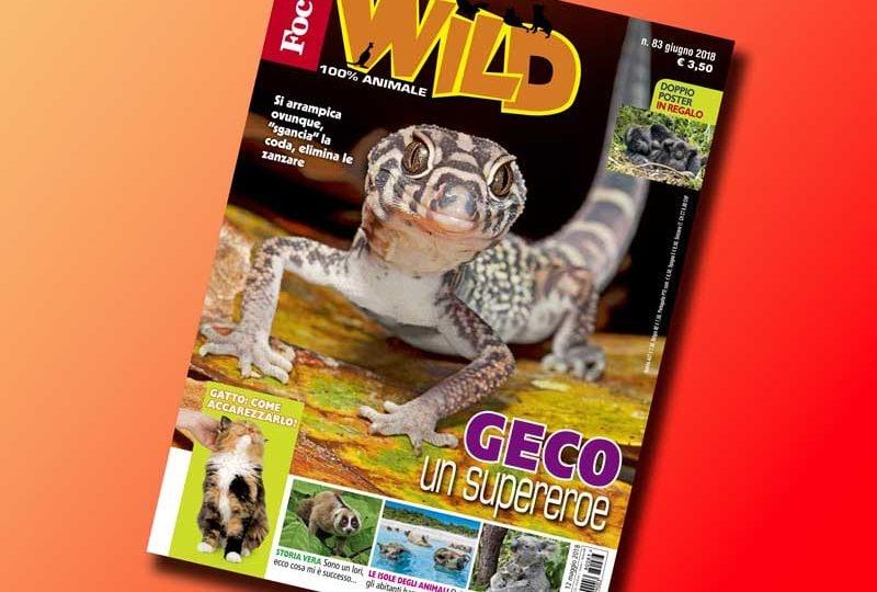 In esclusiva per voi tutti gli extra di Focus Wild n. 83!