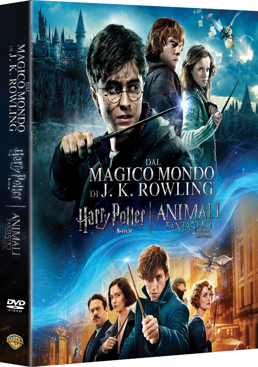 Harry Potter in DVD e Blue Ray