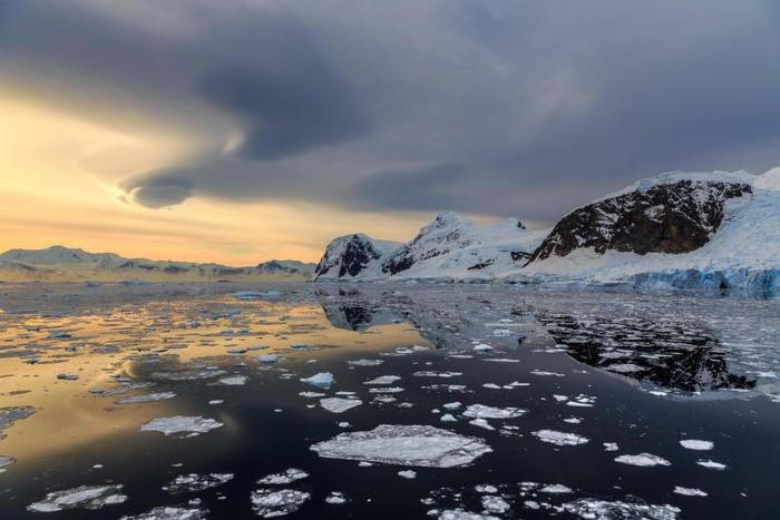 S.O.S Antartide: i ghiacci del Polo Sud si stanno sciogliendo!