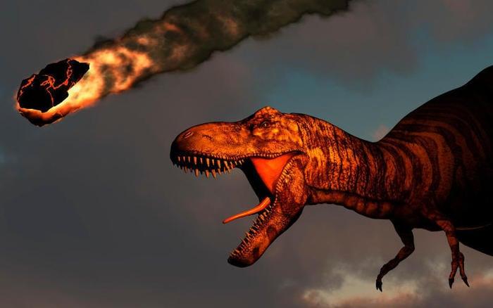 Preistoria: l'asteroide che cancellò i dinosauri non fermò il fiorire della vita
