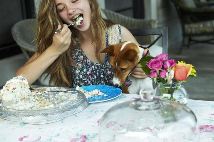 Cibo per cani: ecco cosa proprio NON possono mangiare! (VIDEO)