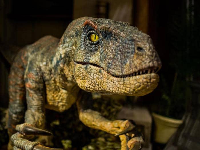Junior reporter, i dinosauri sono arrivati in valle d'aosta