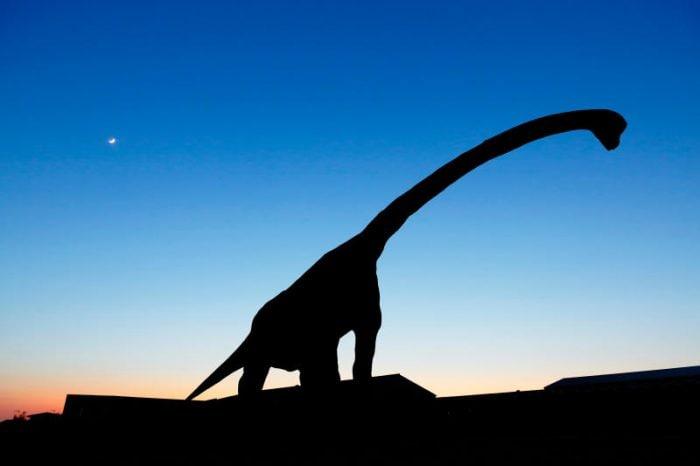 Il vero Bigfoot? È un dinosauro dal collo lungo!