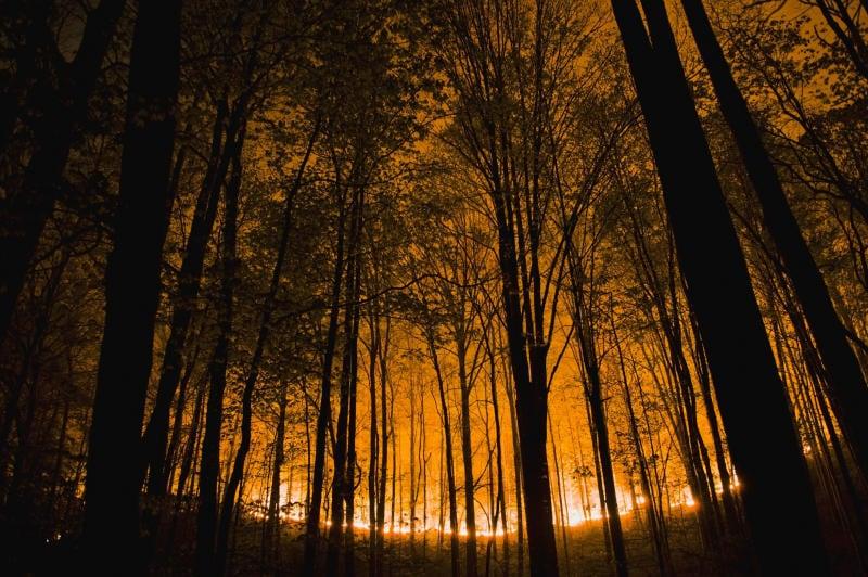 Le previsioni meteo contribuiscono a prevenire gli incendi boschivi