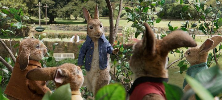 Peter Rabbit in DVD