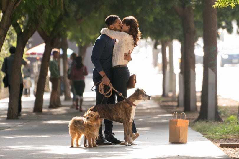Dog days: in amore ci vuole fiuto