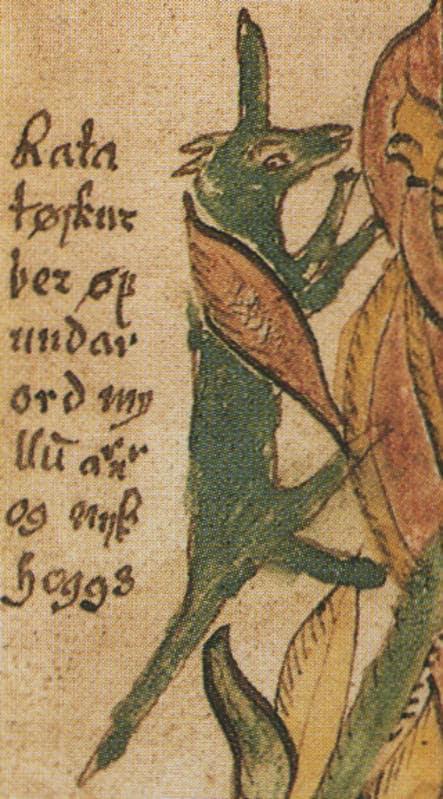 mitologia norrena