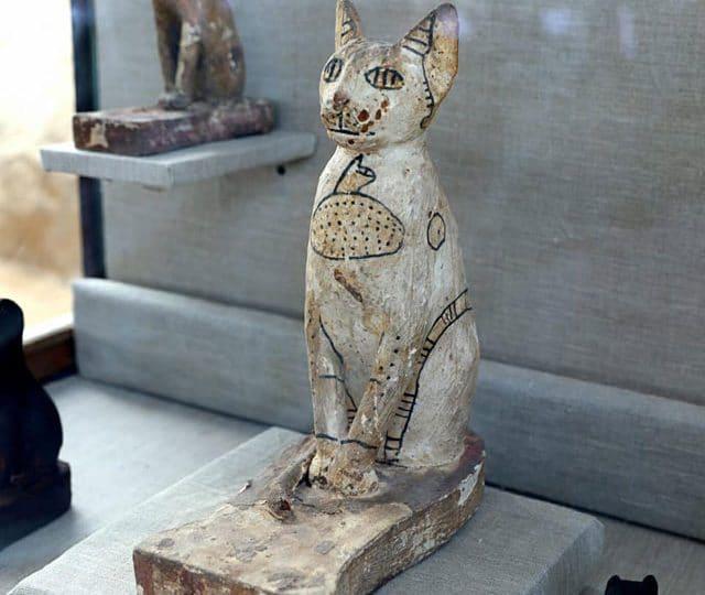 A Saqqara, in Egitto, è stata scoperta una necropoli di gatti