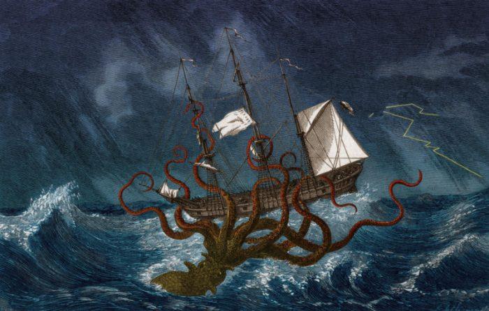 Alla scoperta del calamaro gigante