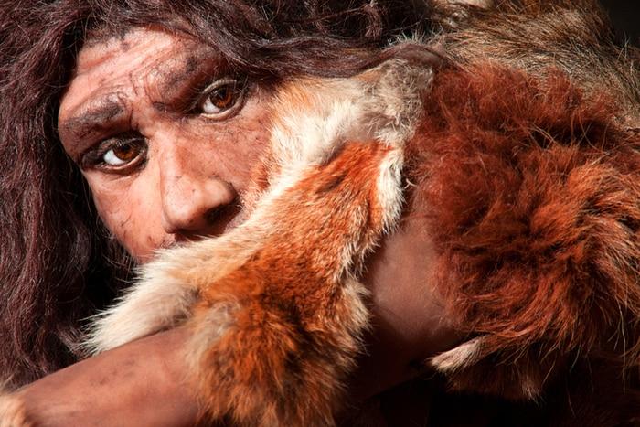 Neanderthal più violenti dei Sapiens? La scienza dice di no…
