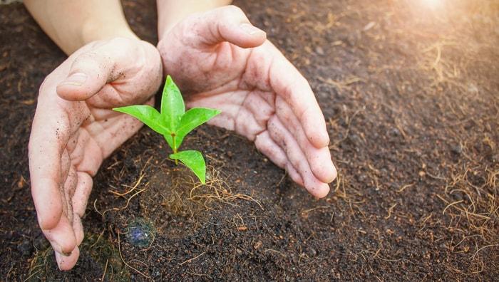 Giornata Mondiale del Suolo: il 5 dicembre si celebra la Madre Terra!