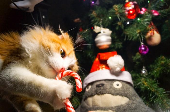 animali natalizi