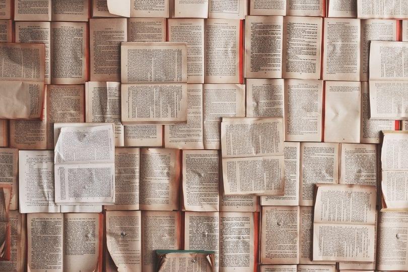 Junior reporter racconto: il libro di Carola