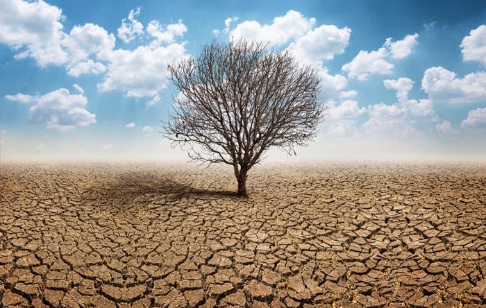 Cambiamenti climatici: che cos'è il riscaldamento globale e perché va fermato