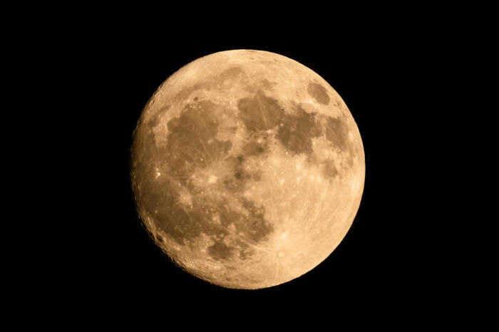 Sulla Luna è cresciuto un germoglio di cotone