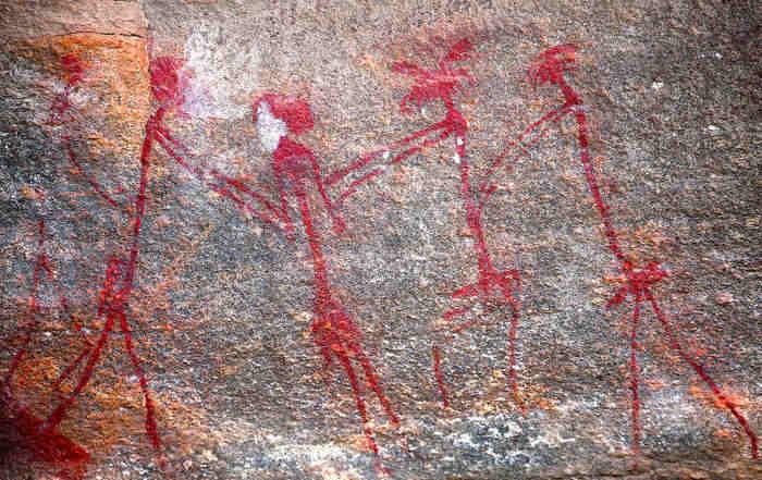 La caccia permise a Homo Sapiens di conquistare le foreste pluviali