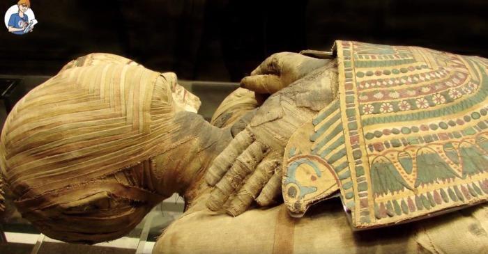 5 cose che non sai sulle mummie (VIDEO)