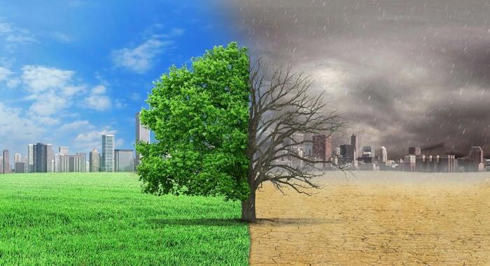 Salviamo l'ambiente: titoli e link per comprendere il movimento del Climate Strike