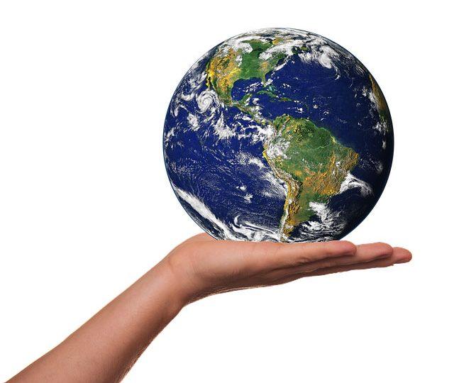 Earth Day 2019: tutti insieme per salvare le specie a rischio!