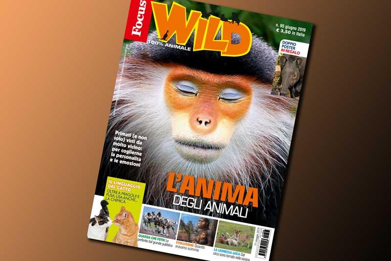 In esclusiva per voi tutti gli extra di Focus Wild n.95