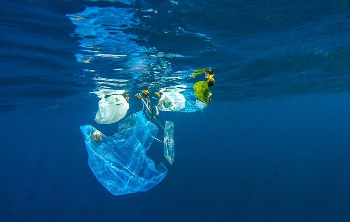 Un mare di (micro)plastica biodegradabile e digeribile