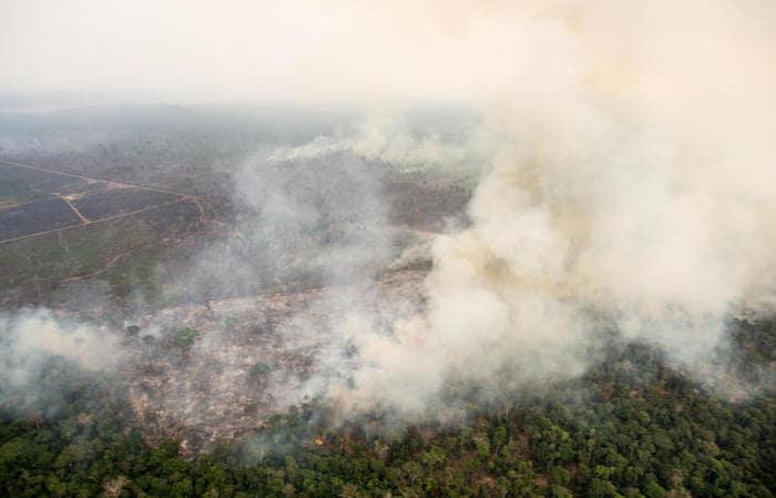 Incendi in Amazzonia: quanto è grave la situazione?