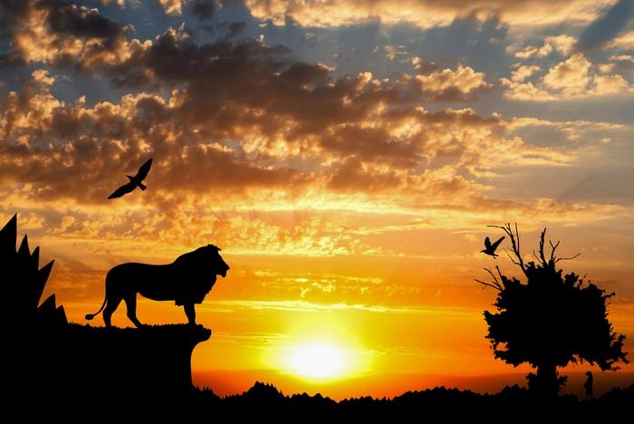 Il Re Leone: 7 bellissime curiosità che (forse) non conoscete