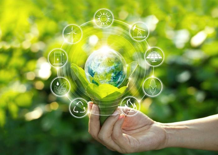 Le parole amiche dell'ambiente: conosci il significato dei termini dell'ecologia?