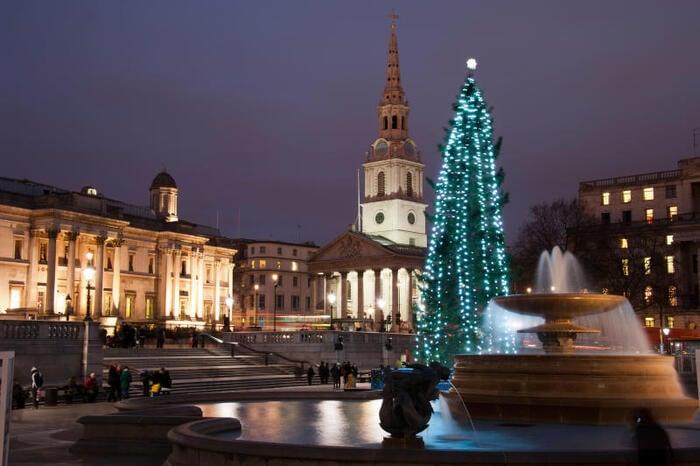 Curiosità natalizie: l'albero di Trafalgar Square