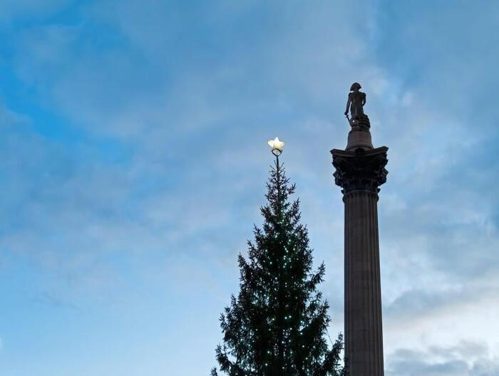 Albero di Trafalgar Square