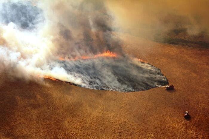 Incendi in Australia: la situazione spiegata ai ragazzi