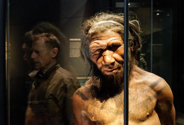 C'è un po' di Neanderthal anche negli africani
