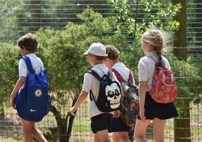 Maschile e femminile: l'educazione di genere a scuola