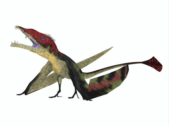 dinosauri italiani