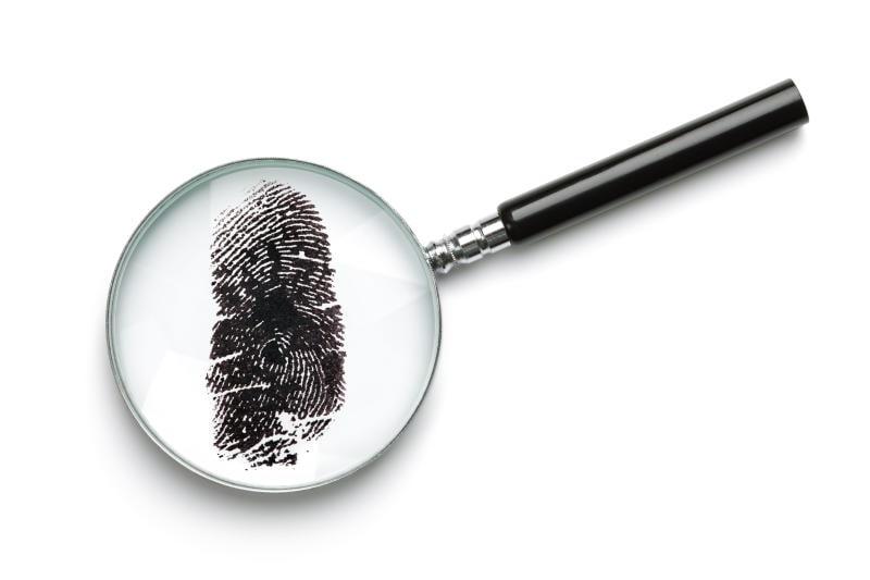 Junior reporter, l'agenzia investigativa fantasy e il connettore perduto