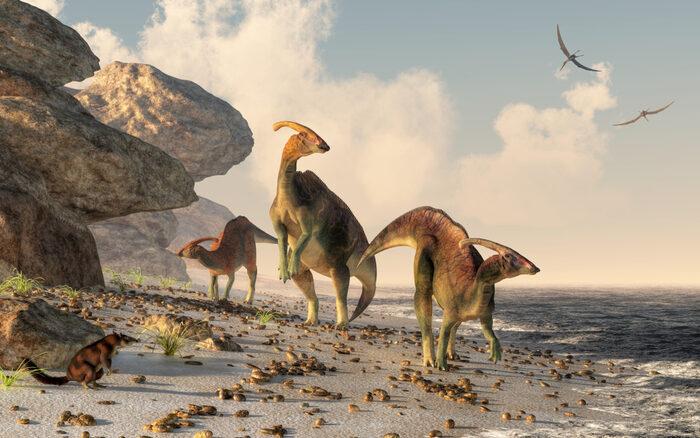 Lo sapevi perché non esistono più animali grandi come i dinosauri?