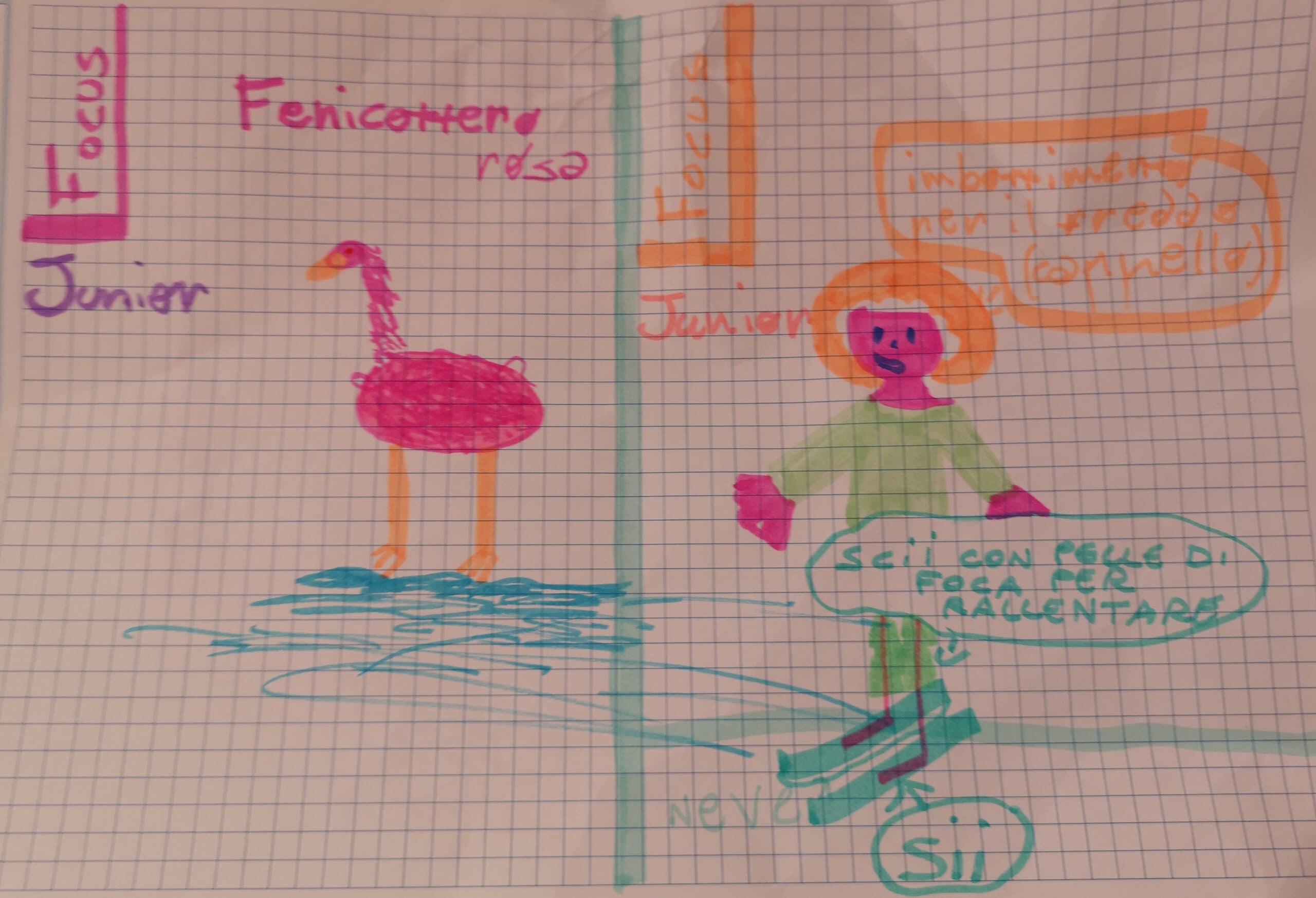 Gallery, i nostri amici animali nei disegni dei focusini 5