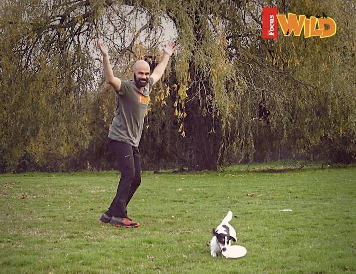 I video di Adrian Stoica: giochi col frisbee – il roller