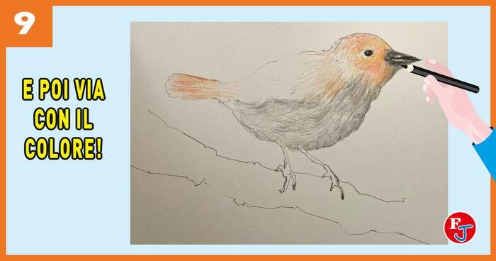 Ritratto all'uccellino