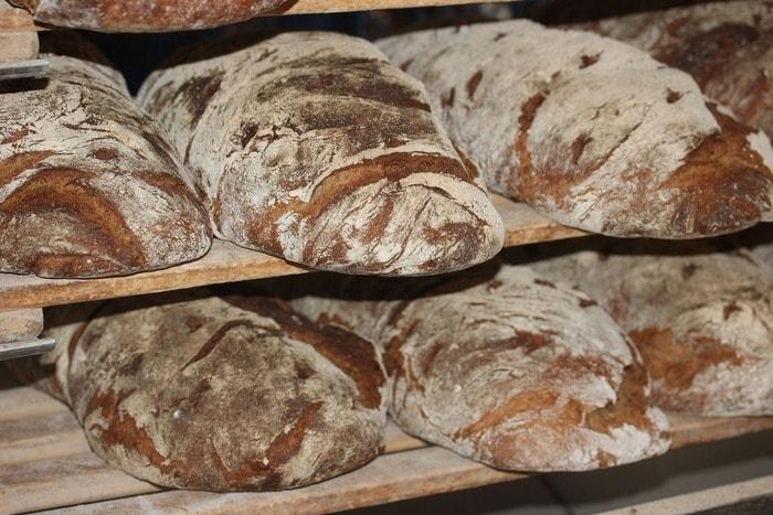 I segreti del pane: farina, acqua…e batteri
