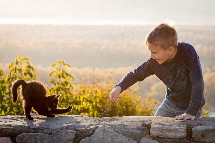 Come capire il gatto? Consigli e curiosità