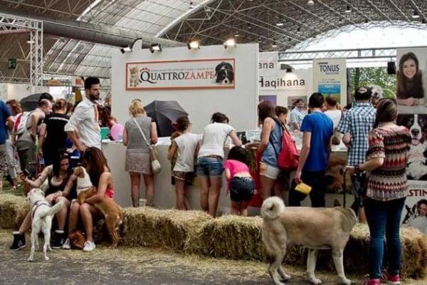 Quattrozampeinfiera. Il grande evento di Milano dedicato a cani e gatti